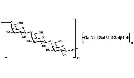 Galactan (Potato)