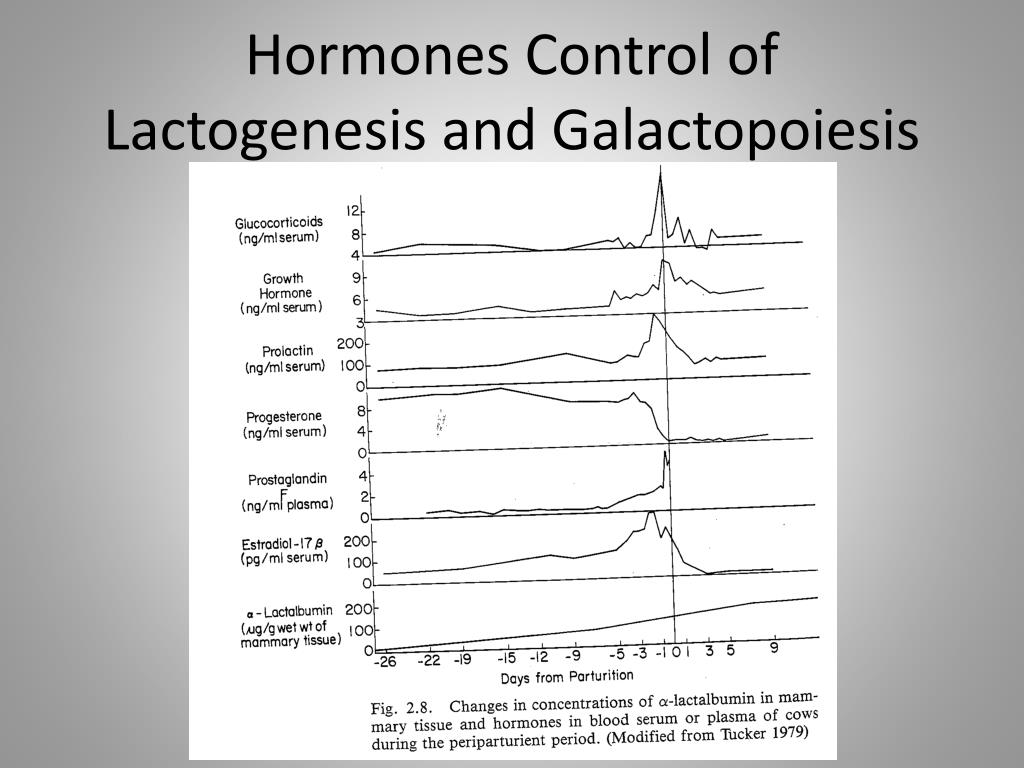 hormones control of lactogenesis and galactopoiesis n.