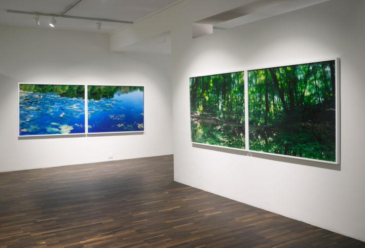 Christophe Guye Galerie Water Mirror Risaku Suzuki Ausstellungsansicht 1
