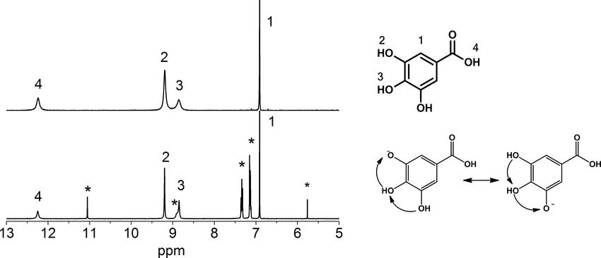 1H NMR spectra of gallic acid (top) and gallic acid + DPPH radical (