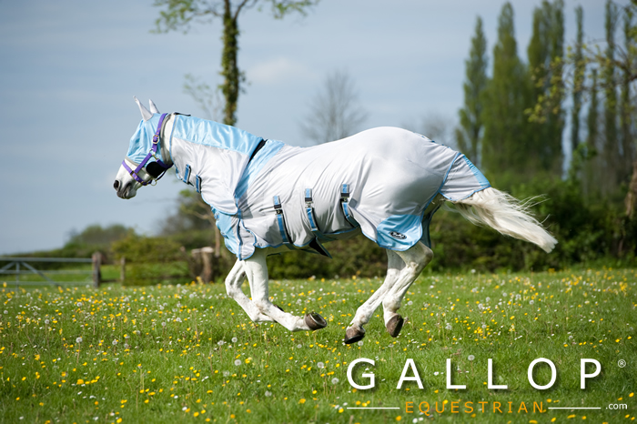 Gallop Horse Fly Rug Set | Combo neck cover and mask