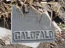 galofalo