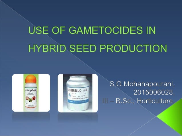 The chemicals that induce the male sterility in plants are called  Gametocides.