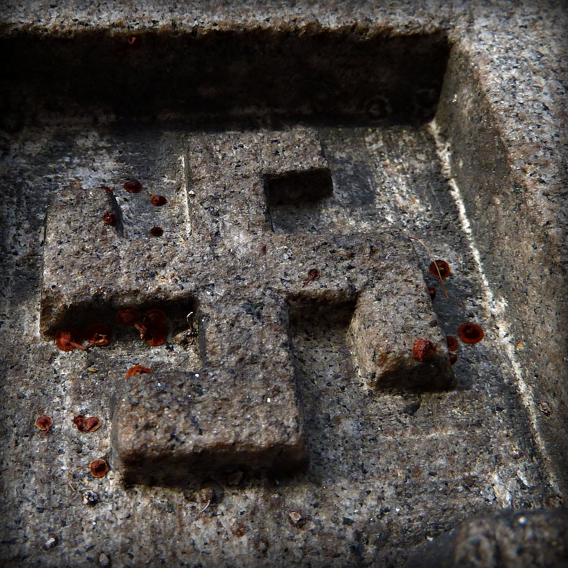 File:Gammadion in granit.jpg