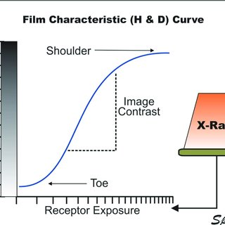 The characteristic (H & D) curve relating film 0ptical density to receptor  exposure that
