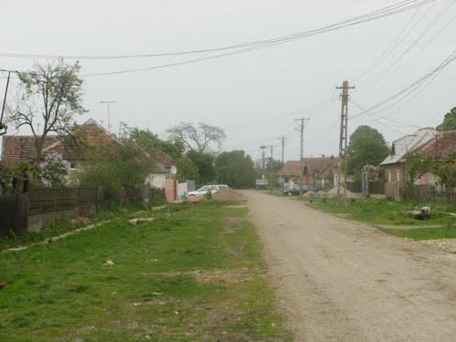 File:Hrip Satu Mare.jpg