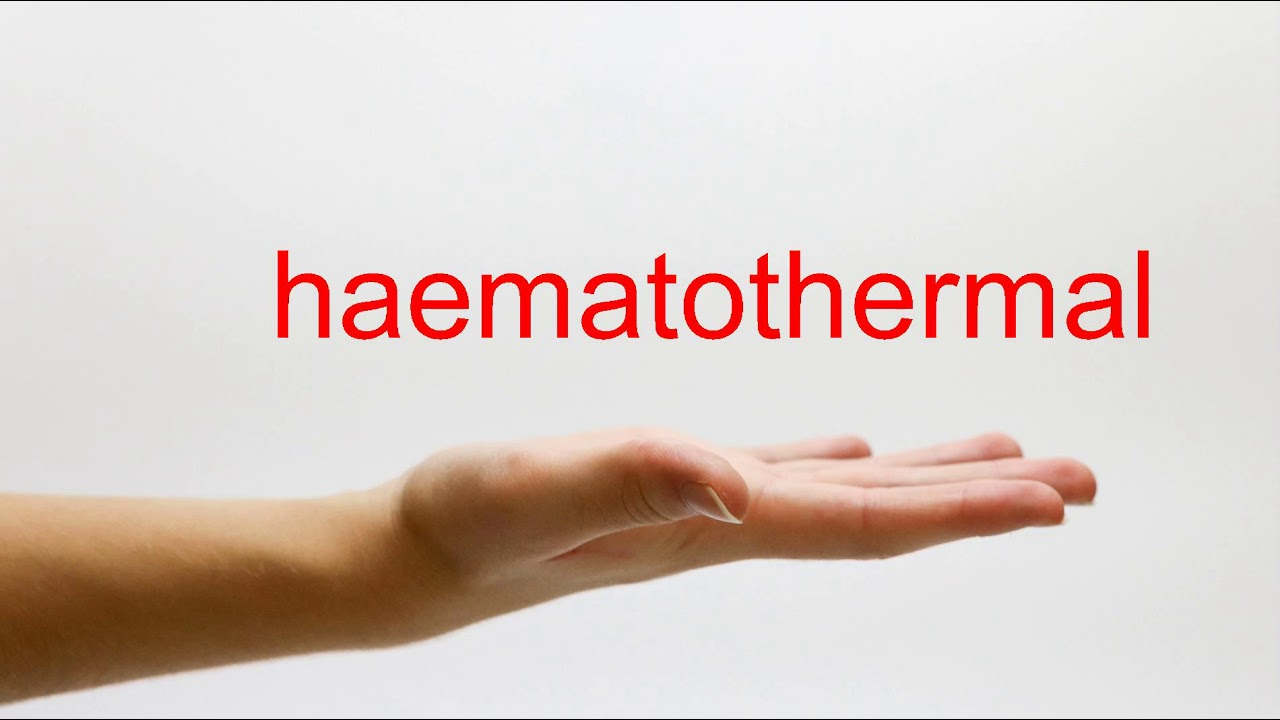 How to Pronounce haematothermal - American English