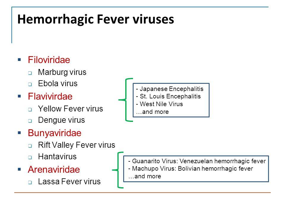 haemorrhagic fever
