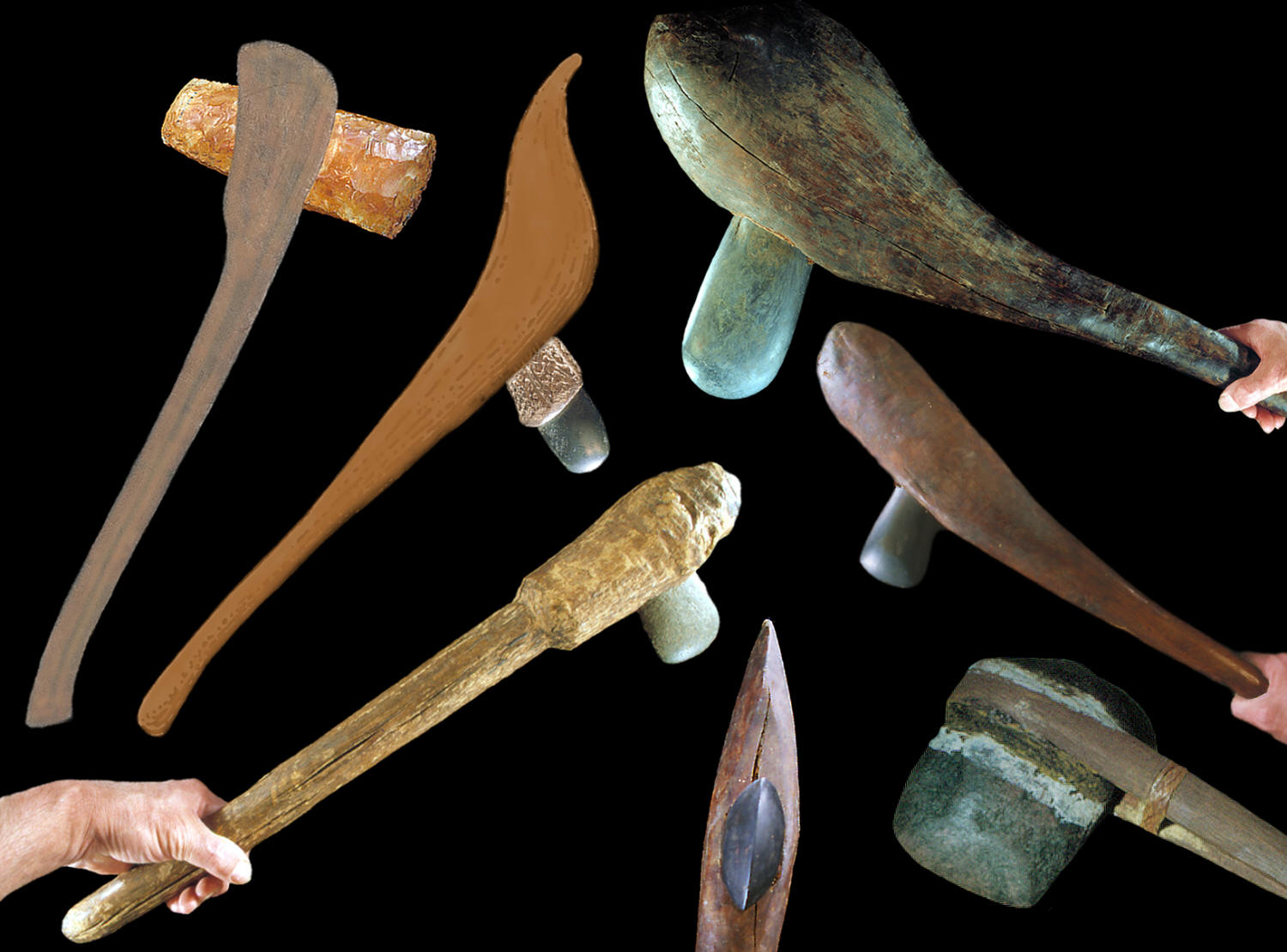 Seven hafted axes from different areas of the world.