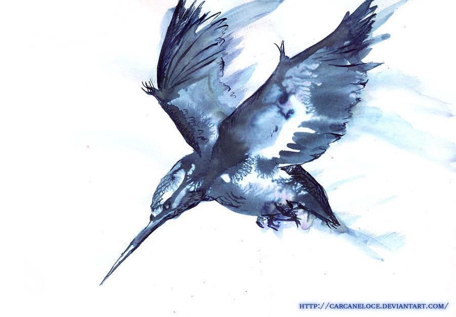 Halcyon: (n) a mythical bird that calmed the waves in winter; peaceful. To  go with my halcyon word tattoo.