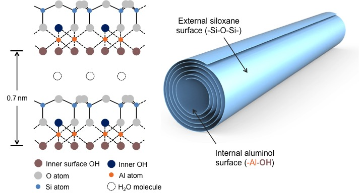 Chemical and physical structure of halloysite clay nanotubes