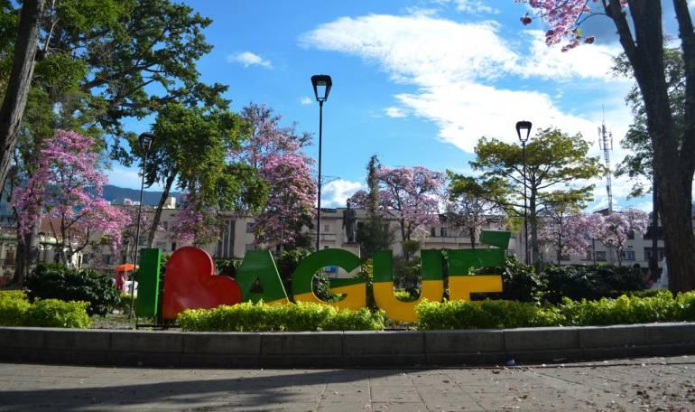 Ibagué es reconocida mundialmente en materia de sostenibilidad
