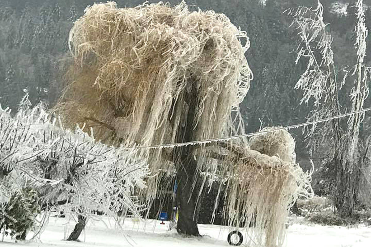 More than 900 emergency calls during Fraser Valley ice storm