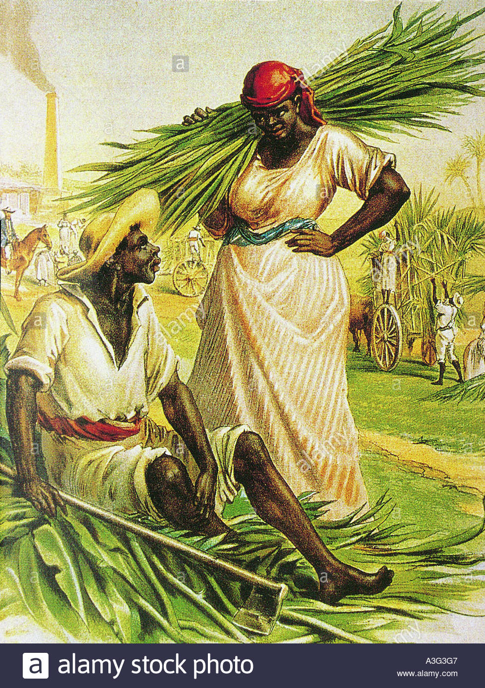 SLAVERY coloured lithograph showing a idealised scene on an American sugar  cane farm - Stock Image