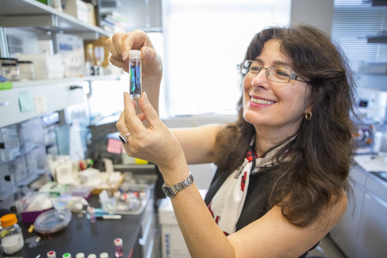 Harvard Prof. Joanna Aizenberg. Credit: Harvard School of Engineering and  Applied Sciences