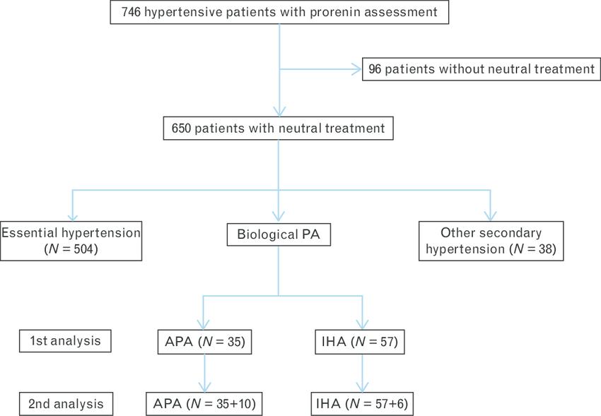 APA, aldosterone-producing adenoma; IHA, idiopathic hyperaldosteronism; PA,