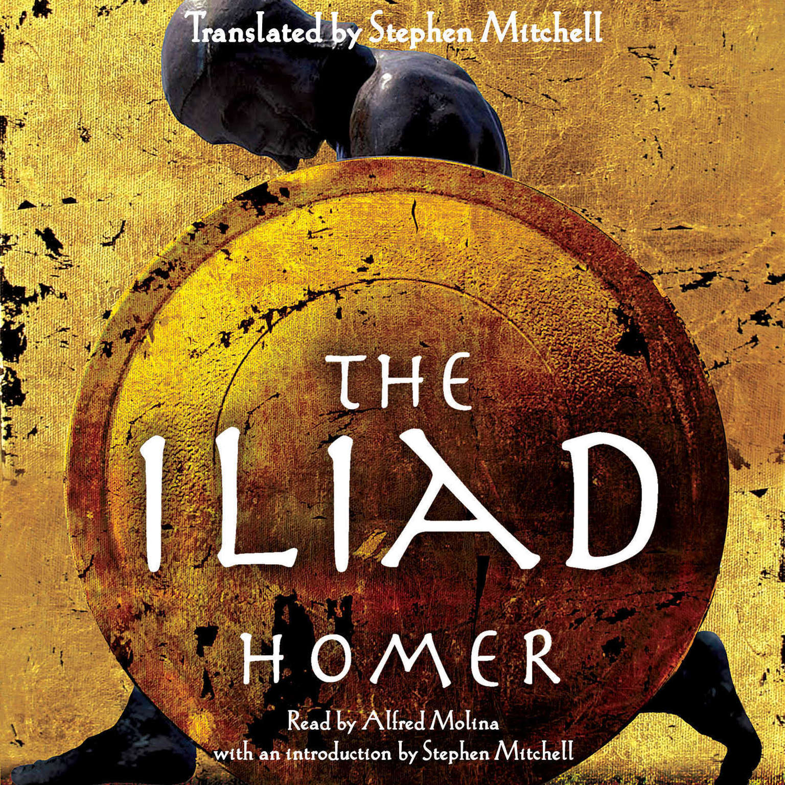 The Iliad Audiobook, by Homer