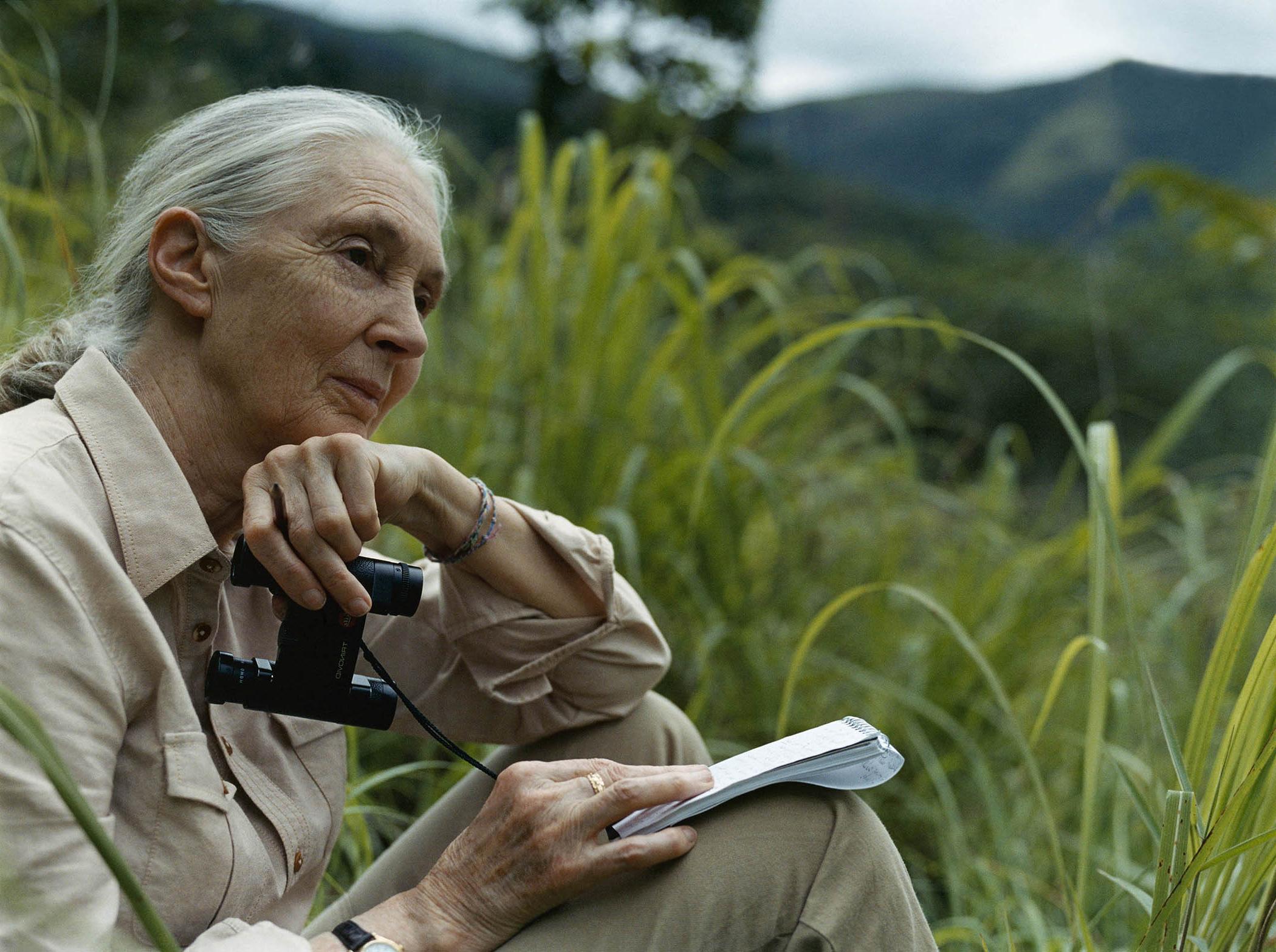 Conoce el Instituto Jane Goodall