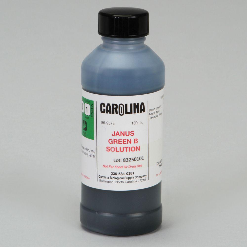 Janus Green B, 0.1% Aqueous, Laboratory Grade, 100 mL