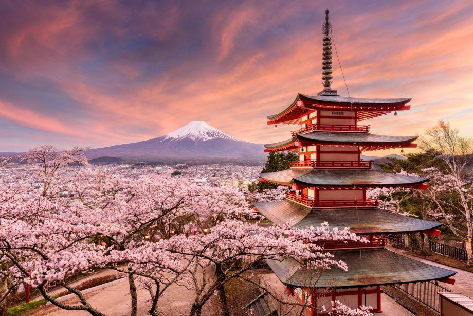 J1GDDB Fujiyoshida, Japan at Chureito Pagoda and Mt. Fuji in the spring  with cherry blossoms.