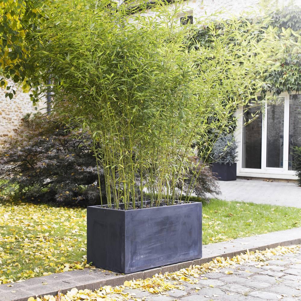 Jardinière rectangulaire Delmas, anthracite L. 99 x l. 46 x H. 50