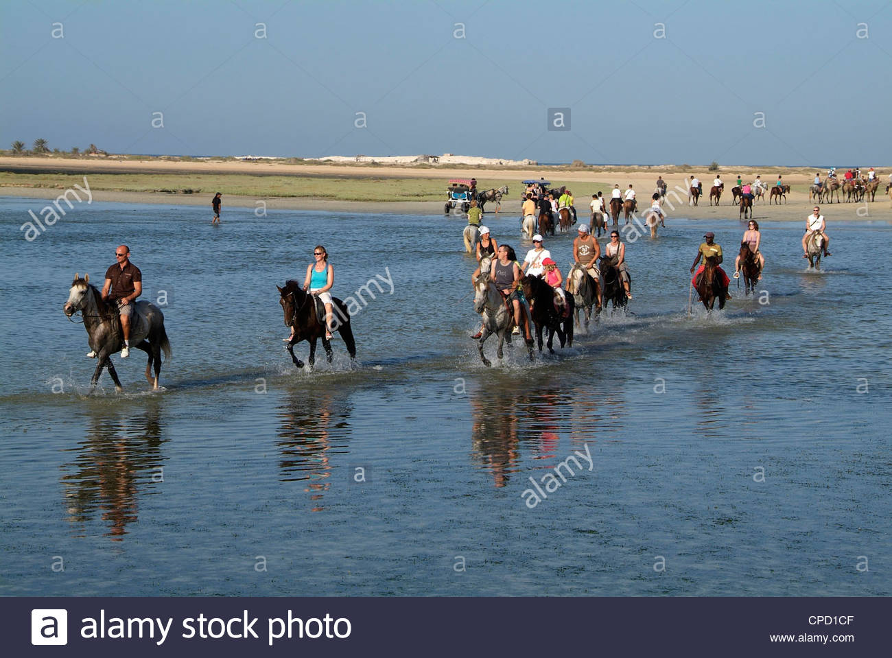 Tourists riding horses near Sidi Garous, Island of Jerba, Tunisia, North  Africa, Africa