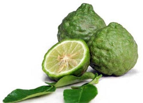 A Grade Organic Kaffir Lime