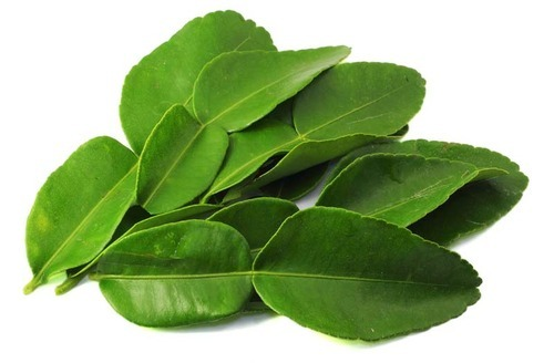 Kaffir Lime Leaves, Packaging Type: Thermocol Box