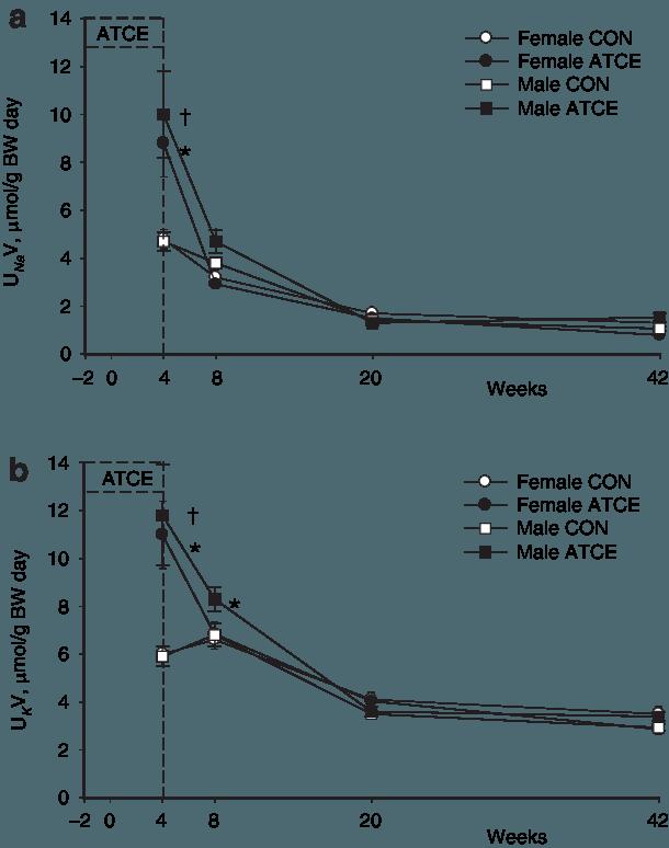(a) Natriuresis and (b) kaliuresis. *P < 0.05, † P < 0.01 vs. FHH CON.  ATCE, FHH perinatally treated with l-arginine, taurine, vitamin C, and  vitamin E; BW,