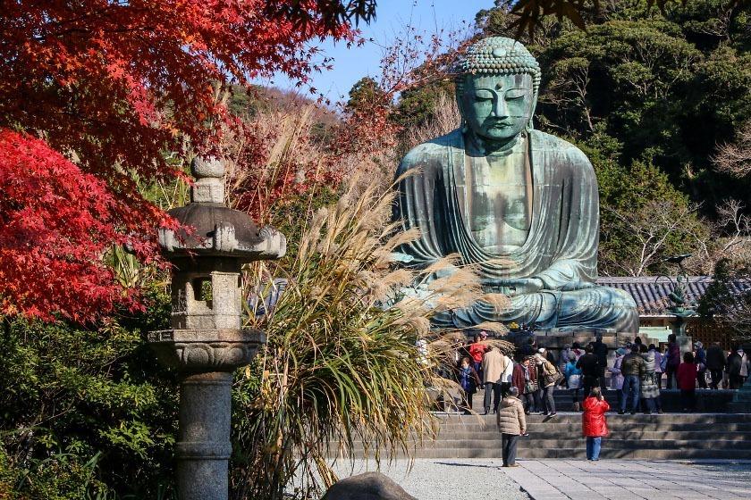 Autumn colors surrounding the Great Buddha of Kamakura