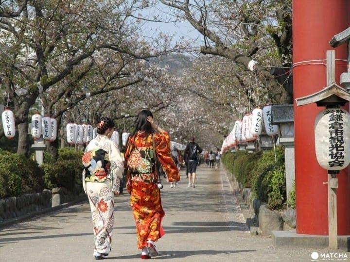 Guía de viaje de Kamakura: bienvenidos a la vieja capital japonesa en  Kanagawa