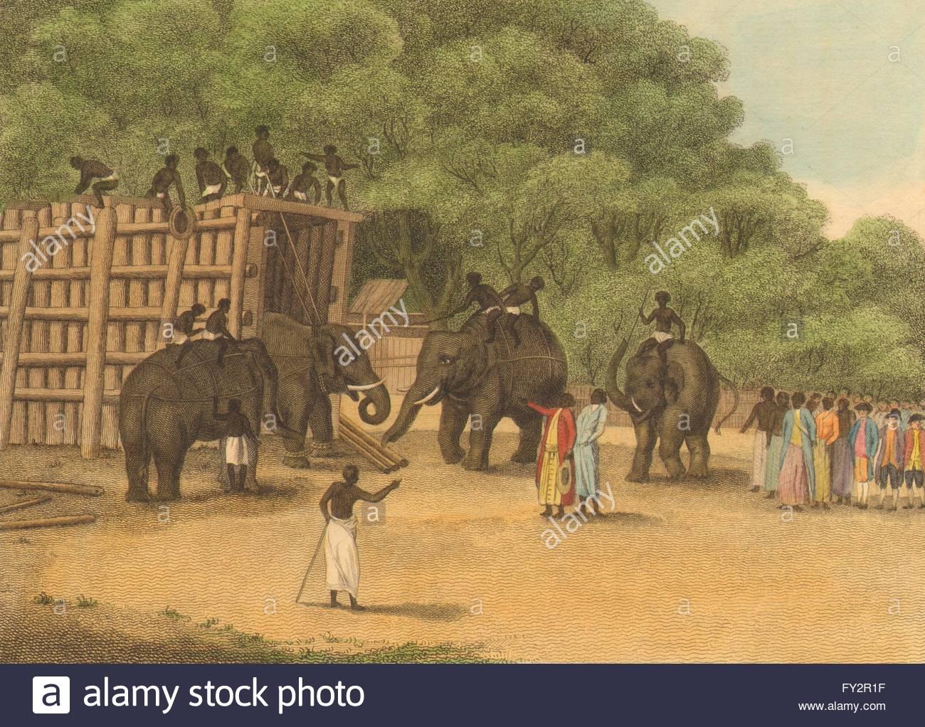 Keddah. Ropes (Field Sports- Edward Orme) , 1814