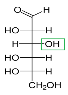 Difference Between D and L Glucose_Figure 6