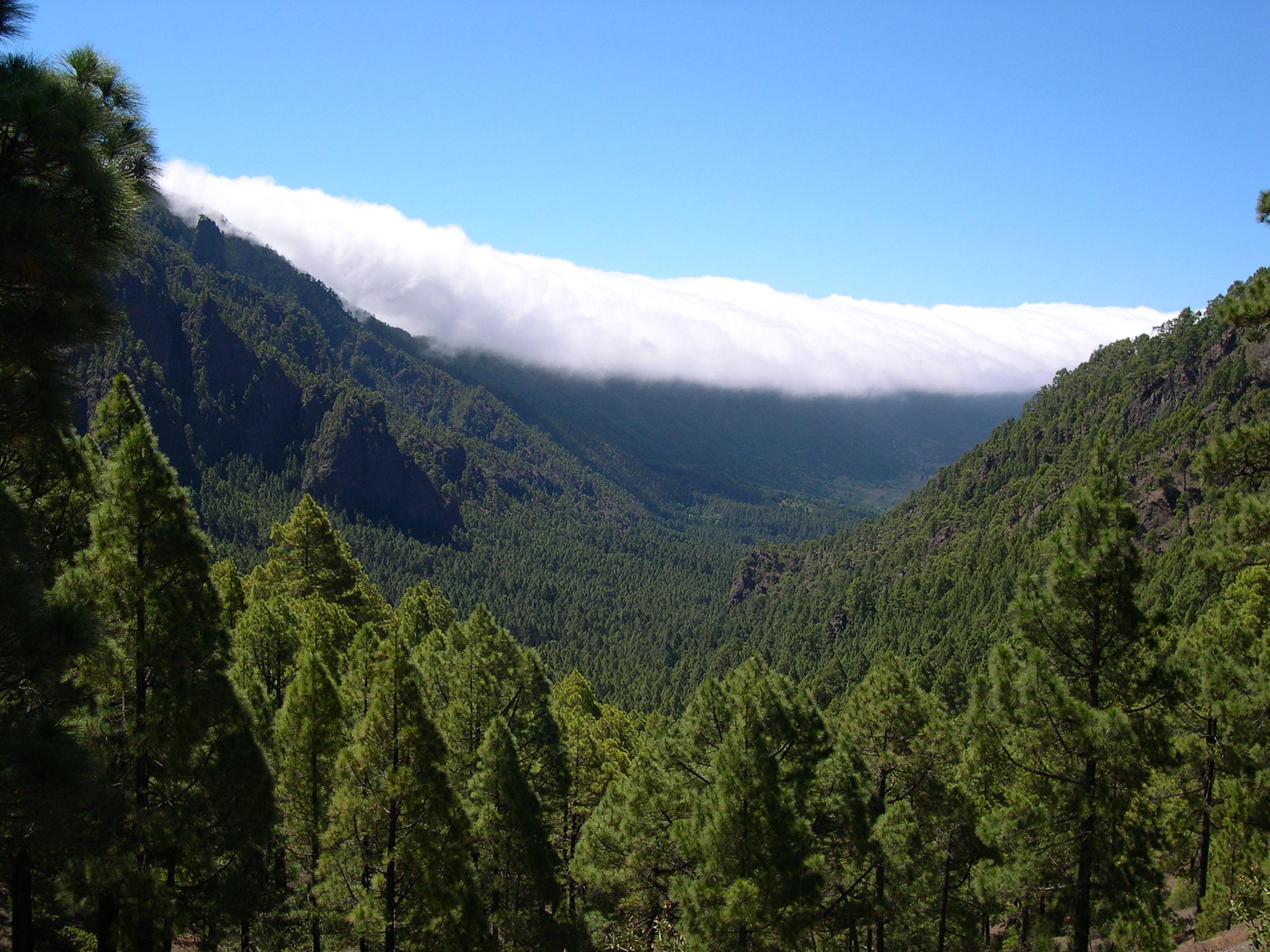 Archivo:Caldera de Taburiente La Palma.jpg