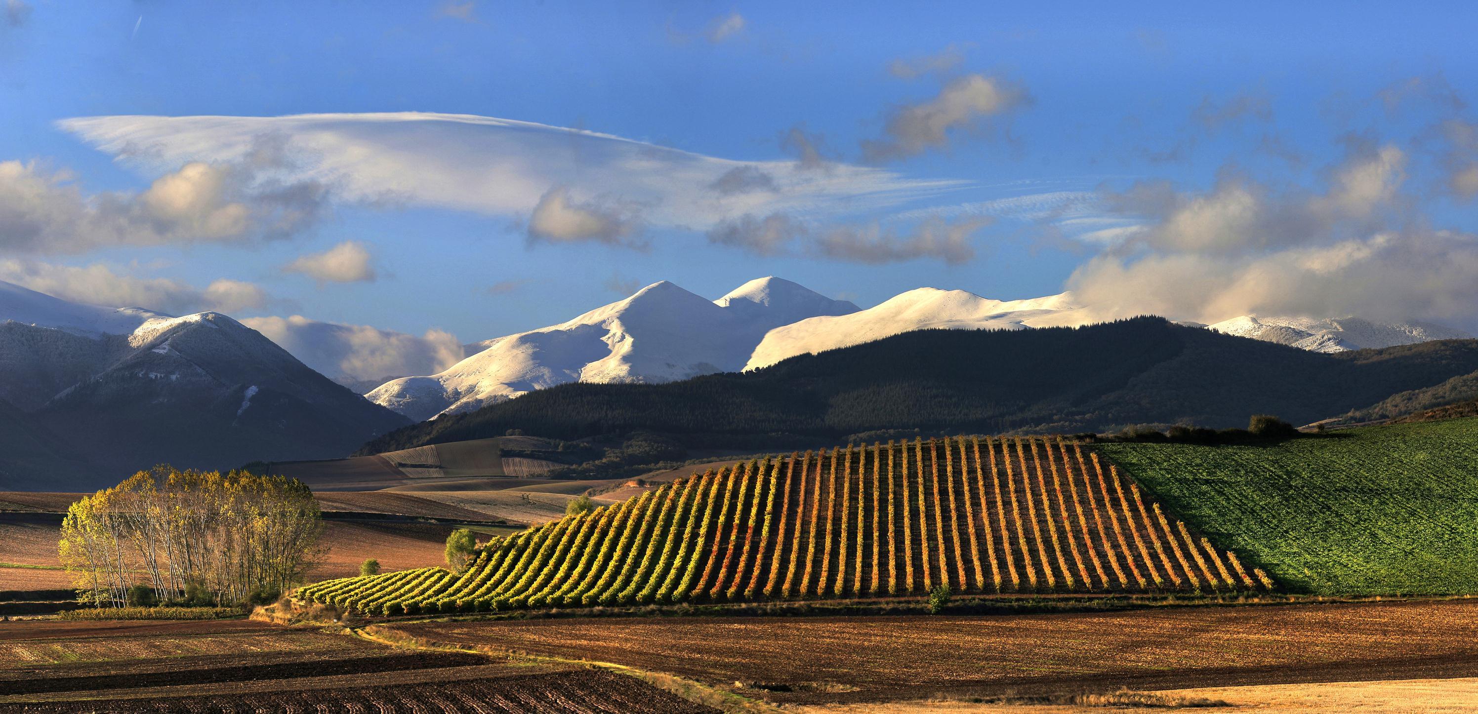 Descubre La Rioja en 360º
