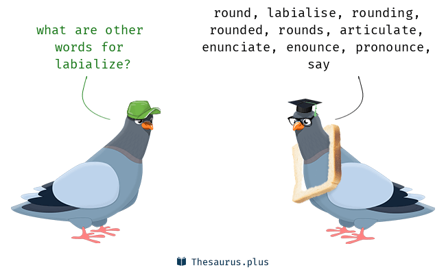 Synonyms for labialize