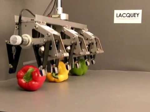 Lacquey BV - robot hand for bell pepper.wmv