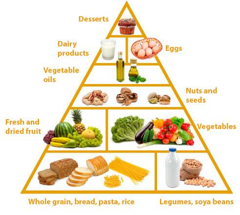 Ovo-lacto vegetarian pyramid