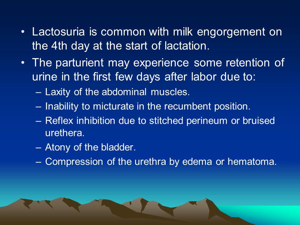11 Lactosuria
