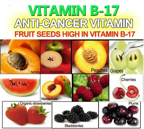 Vitamin B17, Known As Laetrile and Amygdalin, Kills Cancer — Available Over  The Counter